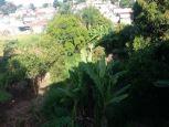 Apartamento - Vila Mimosa